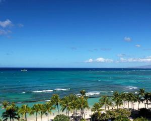 Enjoy Hawaii with the movie