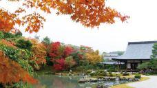 瑞宝寺公园-神户-佛宝宝