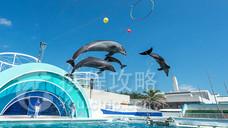鸭川海洋世界