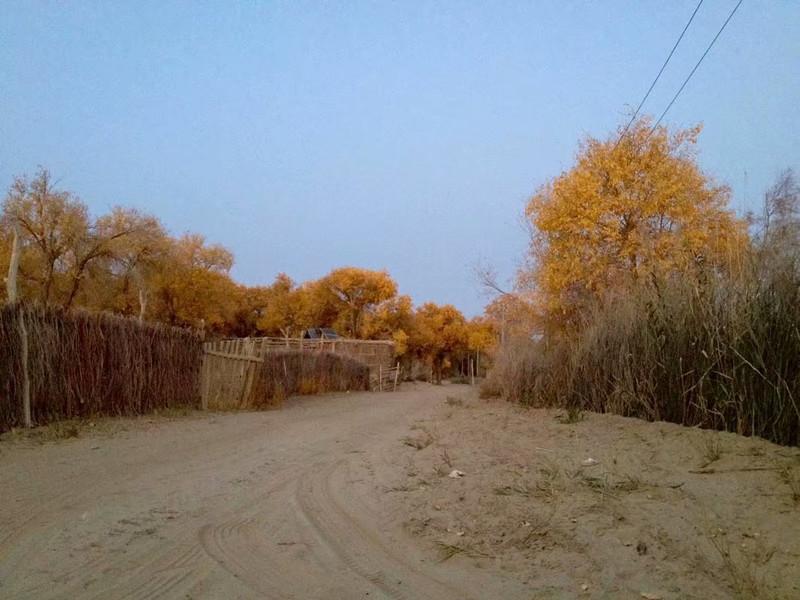 新疆自驾游