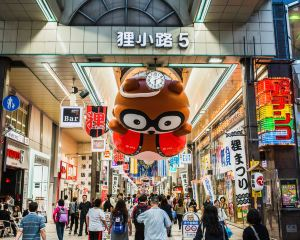 【北海道自由行】北海道交通、景點、美食、活動懶人包