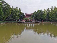 榴花公园-东莞-红艳_29