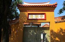 海潮寺森林公园-嵩明-一个大橙子