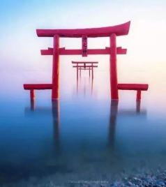 太良町游记图文-清明小长假,佐贺——樱花、温泉、和牛的盛宴(进阶篇—下)