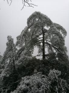 万寿园景区-三清山-_WeCh****10534
