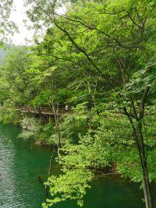 商城西河(金刚台)生态旅游区-商城-森旅迷了鹿i