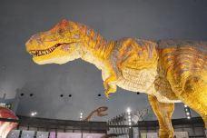 恐龙博物馆-胜山市-Iceman626