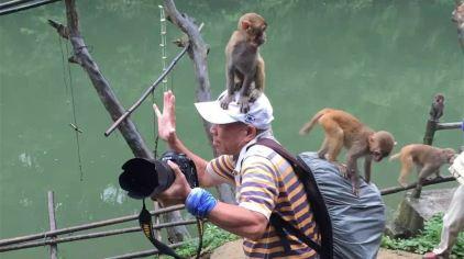广西龙虎山自然保护区 (5)