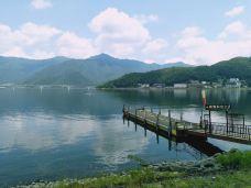 西湖-富士河口湖町-205****262