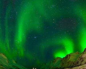 【冰島手信】來冰島買什麽?快來看看這10大好物!