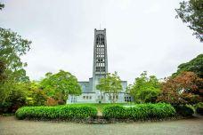 Nelson Cathedral-尼尔森-doris圈圈