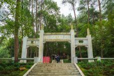 毛泽东双亲墓-韶山-doris圈圈