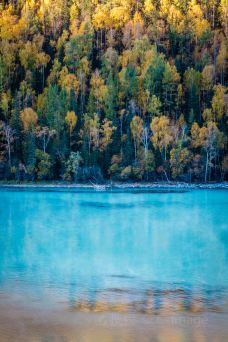 新疆喀纳斯国家地质公园-布尔津-doris圈圈