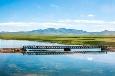 三江源自然保护区-玉树-尊敬的会员