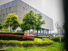 浦东第一图书馆-上海-洞庭春秋
