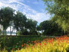 艾溪湖湿地公园-南昌-冬日暖阳