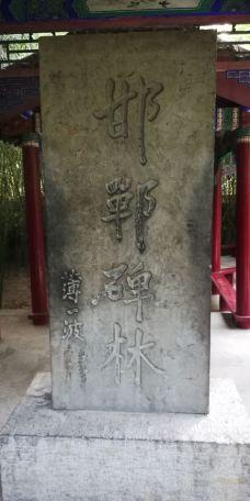 丛台公园-邯郸-_CFT0****8150