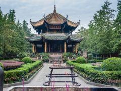 问道青城山——与熊猫零距离接触的亲子4日游