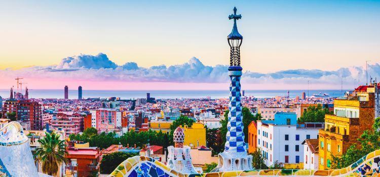 Top 22 Best Tapas in Barcelona Spain