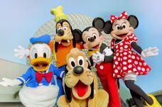 华特迪士尼世界-奥兰多-尊敬的会员