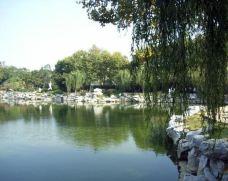 青年湖公园-延吉-一个大橙子