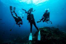 南湾猴岛潜水-陵水-doris圈圈