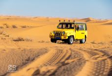 腾格里沙漠营地-阿拉善左旗-110****505