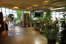 涩谷区互动植物园-东京
