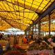 岭南花卉市场