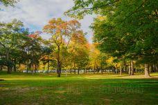 Ashbridges Bay Park-多伦多-卡卡卡卡卡布奇诺
