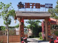 黄流镇-乐东-七月风1