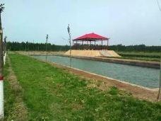 豫星农业观光园-长葛-SUN12999