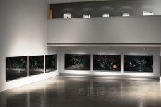 高雄市立美术馆-高雄-C_image