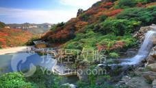 紫云山景区