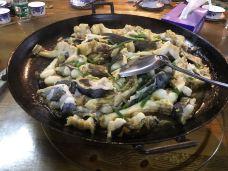 果堡农家乐-广州-量爸
