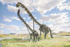 白垩纪恐龙地质公园-二连浩特-尊敬的会员