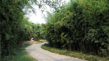 合肥植物园