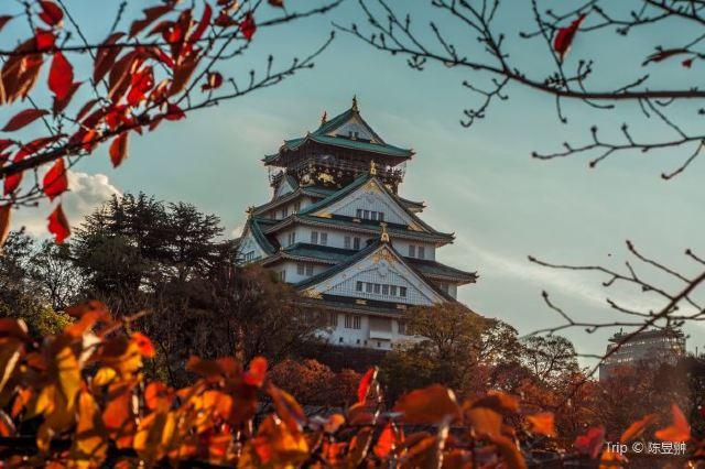 【大阪自由行】11月日本賞楓必去!精選10個大阪紅葉景點