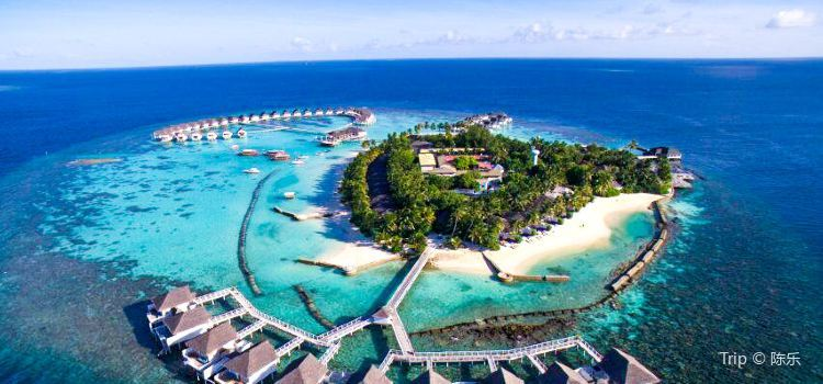 Top 10 Popular Island Hotels in Maldives