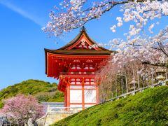 体验和服风情,京都特色旅拍1日游