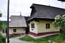 伏尔考林耐克-波普拉德