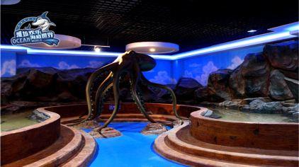 潍坊欢乐海底世界 (12)