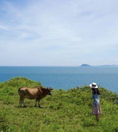 龙海游记图文-去双鱼岛重返20岁