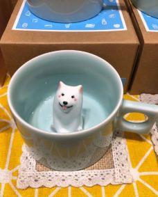 猫的天空之城概念书店(周庄店)-周庄-_WeCh****046796