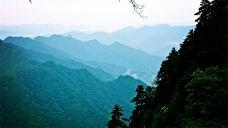 宝天曼生态旅游区-南阳-M29****5227
