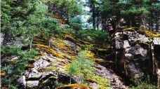 焉支山森林公园-山丹-C-IMAGE