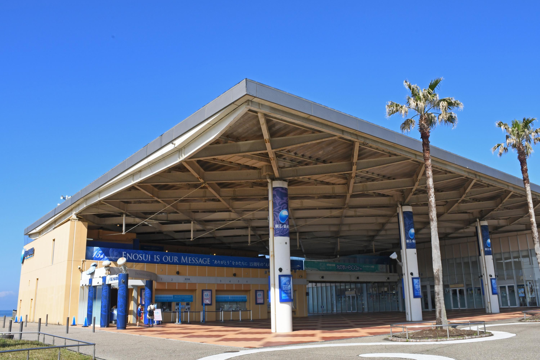 新江ノ島水族館 入場チケット【公式チケット】