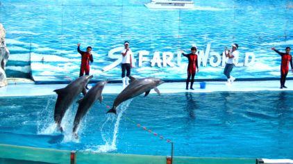 曼谷野生动物园4.jpg