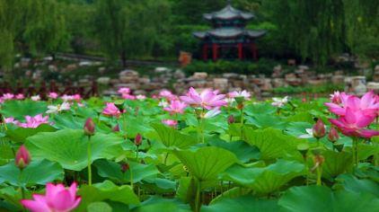北宫国家森林3.jpg
