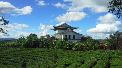 茶博苑 5%.jpg